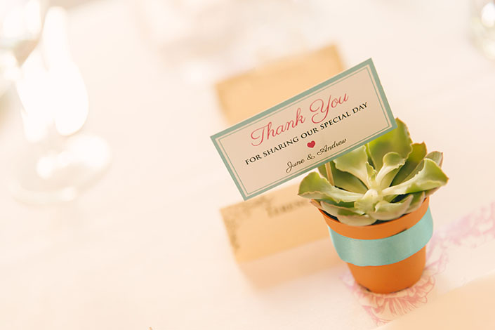 Wedding favour for guests