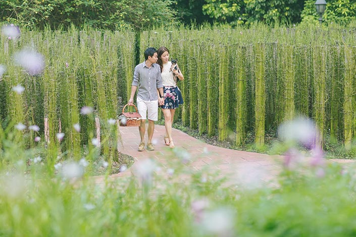 Picnic Perfect Love Story Photography At Singapore Botanical Gardens 03