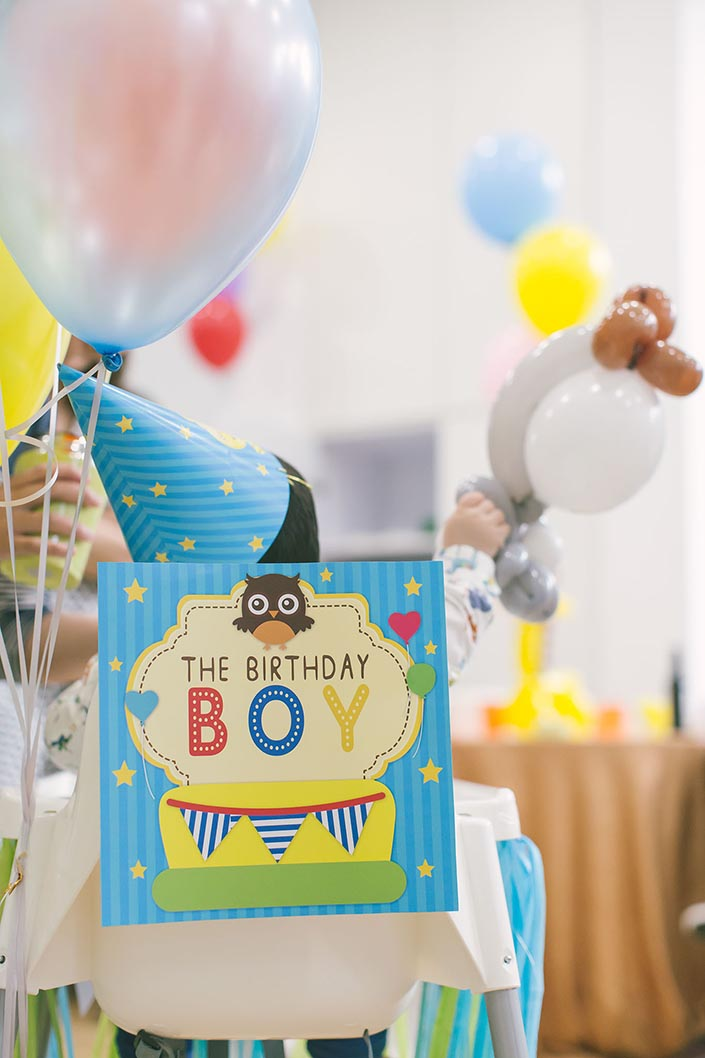 Sweet, Happy, Baby Animals-themed 1-year old Birthday Party Photography