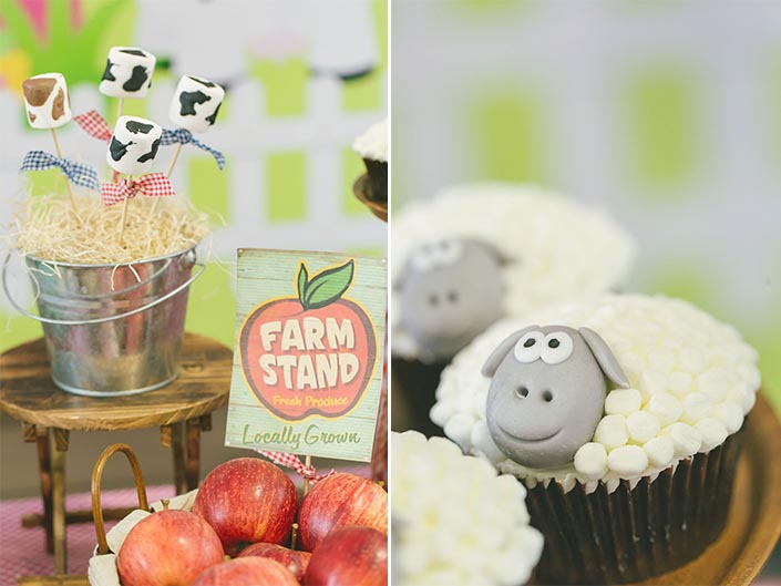 Farm-Themed Dessert Table Birthday Party Photography Singapore
