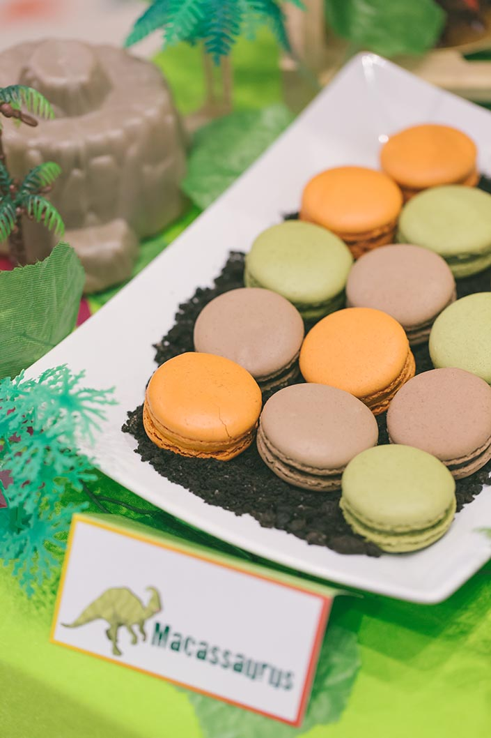 Celebrate with Cake dinosaur-themed dessert table macaroons