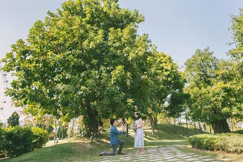 Singapore Wedding Proposal Photography (Andrew & Amelia)